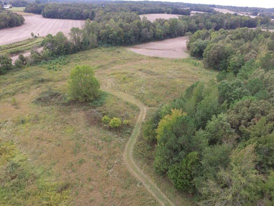 Lots and Land - Luray, TN (photo 5)