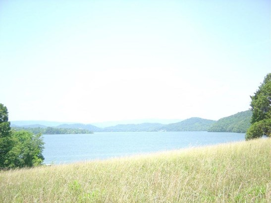 Lots and Land - Rockwood, TN (photo 2)