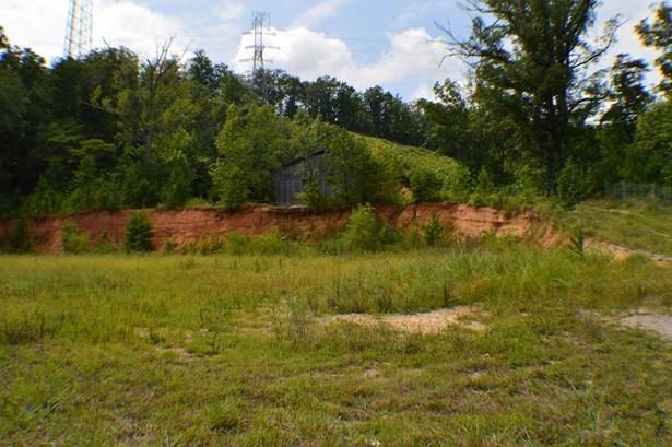 Lots and Land - Mc Donald, TN (photo 2)