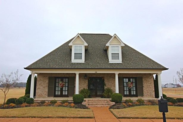 Residential/Single Family - Robinsonville, MS (photo 2)