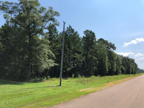 Lots and Land - Steens, MS (photo 1)