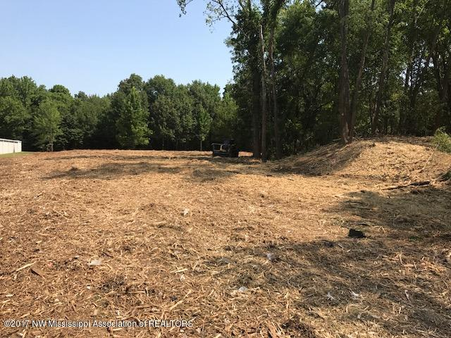 Lots and Land - Southaven, MS (photo 1)