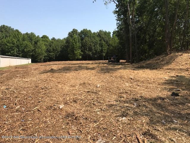 Lots and Land - Southaven, MS (photo 2)