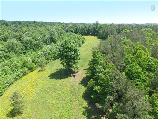 Lots and Land - Summertown, TN (photo 1)