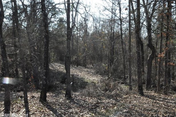 Lots and Land - Searcy, AR (photo 2)
