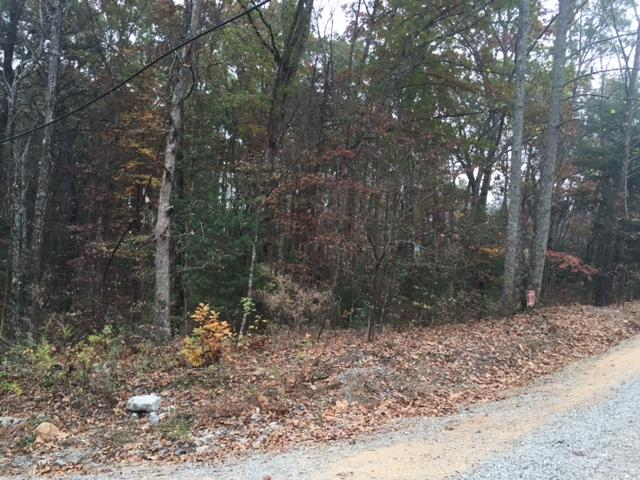 Lots and Land - Tallassee, TN (photo 3)