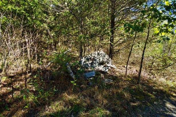 Lots and Land - Sneedville, TN (photo 1)