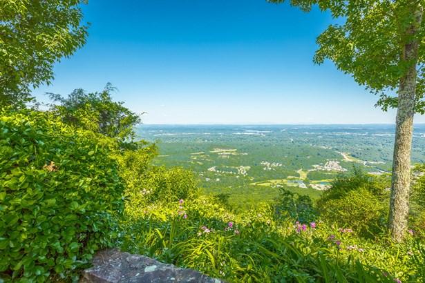Residential/Single Family - Signal Mountain, TN (photo 5)
