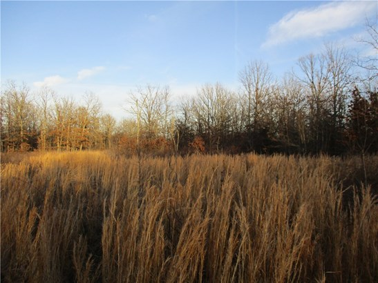 Lots and Land - Kansas, OK (photo 5)