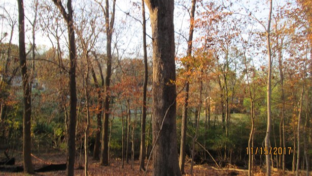 Lots and Land - Hendersonville, TN (photo 1)