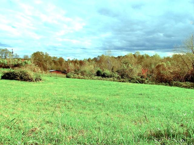 Lots and Land - Gainesboro, TN (photo 1)