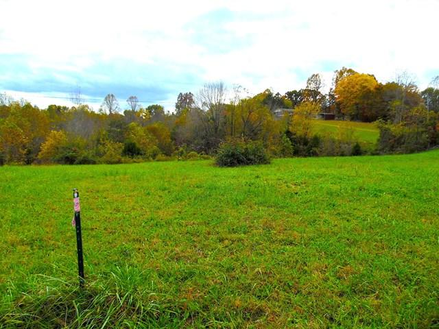 Lots and Land - Gainesboro, TN (photo 2)