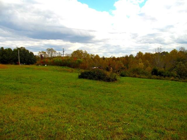 Lots and Land - Gainesboro, TN (photo 3)