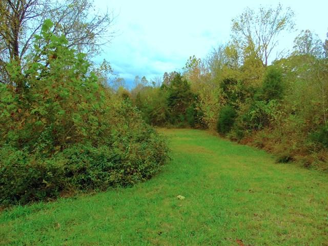 Lots and Land - Gainesboro, TN (photo 5)