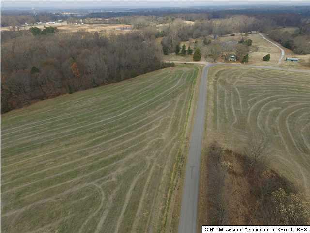 Lots and Land - Ashland, MS (photo 3)