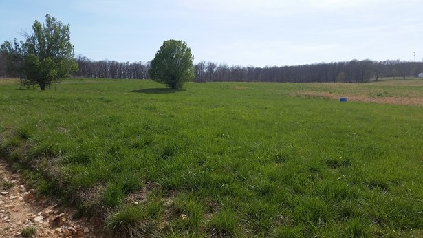 Lots and Land - Decatur, AR (photo 3)