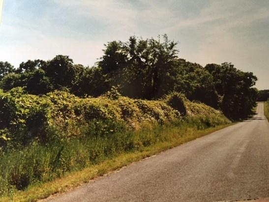 Lots and Land - Williston, TN (photo 2)