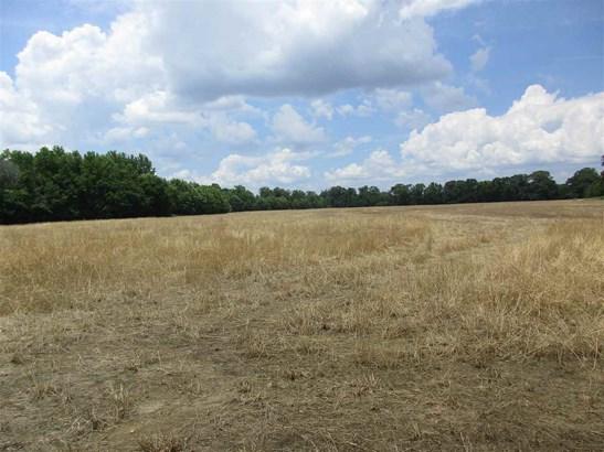 Lots and Land - Savannah, TN (photo 3)