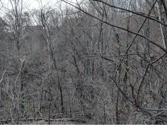 Lots and Land - Johnson City, TN (photo 4)