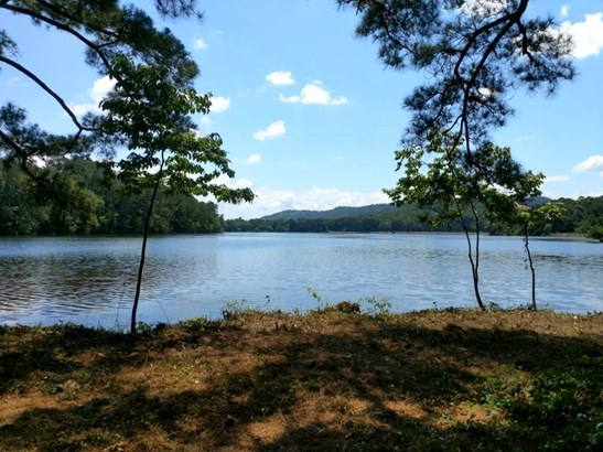 Lots and Land - SCOTTSBORO, AL (photo 4)