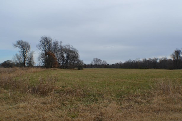 Lots and Land - Gentry, AR (photo 5)