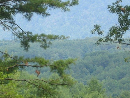 Lots and Land - Tellico Plains, TN (photo 1)