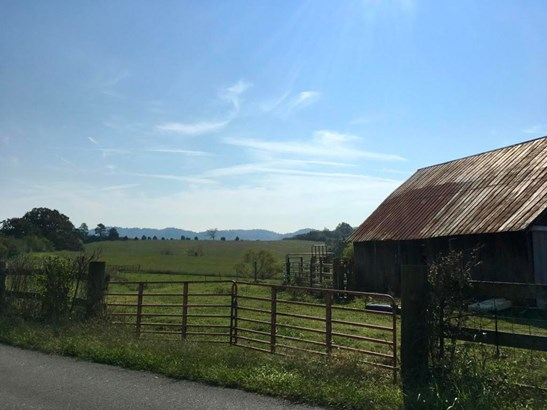 Lots and Land - Sweetwater, TN (photo 4)