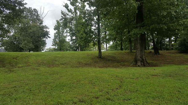 Lots and Land - Bath Springs, TN (photo 3)