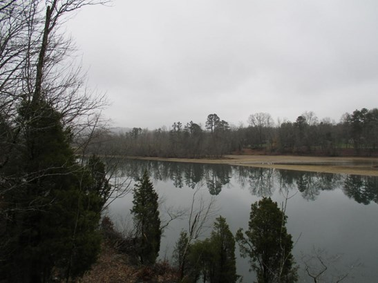 Lots and Land - Harriman, TN (photo 4)