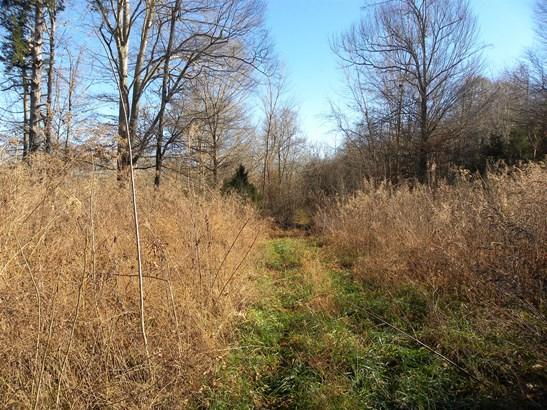 Lots and Land - Waynesboro, TN (photo 3)