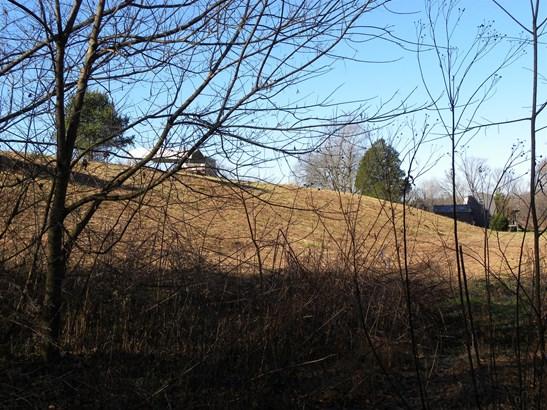 Lots and Land - Waynesboro, TN (photo 4)