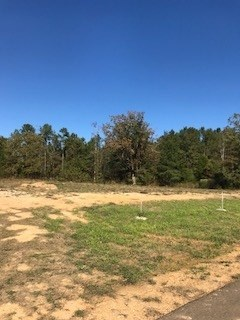 Lots and Land - Florence, MS (photo 3)