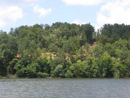 Lots and Land - Iuka, MS (photo 1)
