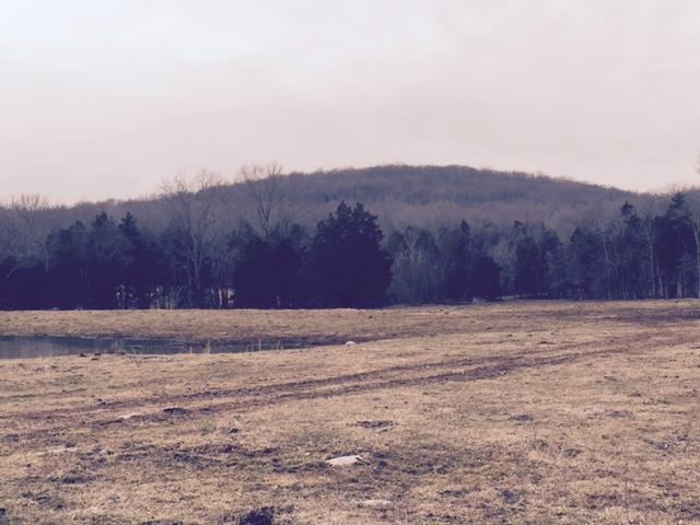 Lots and Land - Arrington, TN (photo 4)