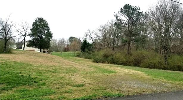 Lots and Land - Rock Spring, GA (photo 2)