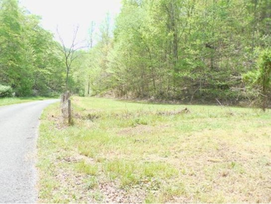 Lots and Land - ROGERSVILLE, TN (photo 4)