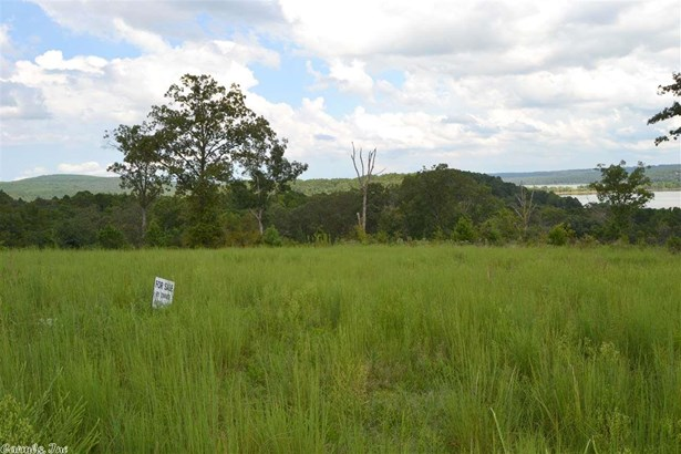 Lots and Land - Edgemont, AR (photo 3)