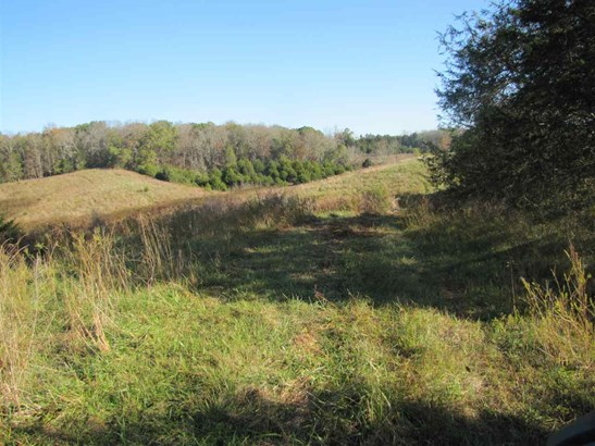 Lots and Land - Newport, TN (photo 1)