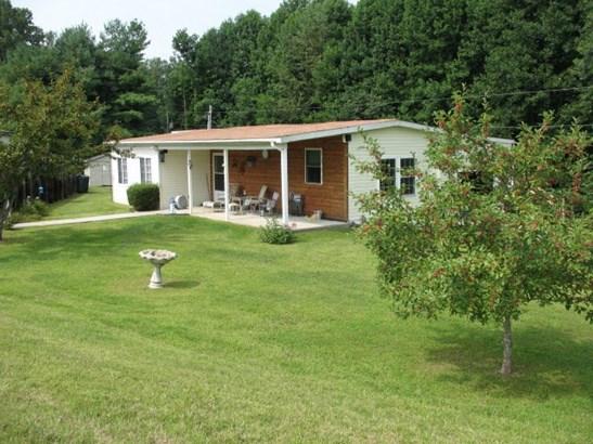 Residential/Single Family - BLOOMINGTON SPRINGS, TN (photo 1)