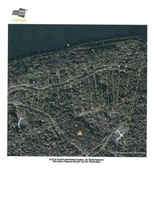 Lots and Land - Maynardville, TN (photo 1)