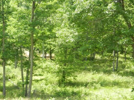 Lots and Land - Oneida, TN (photo 3)
