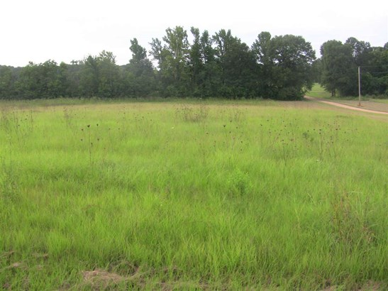 Lots and Land - Terry, MS (photo 1)
