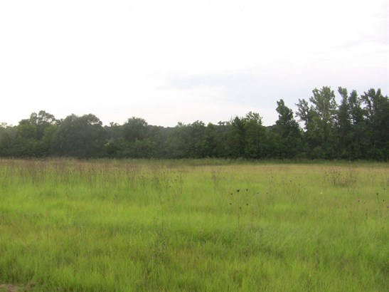 Lots and Land - Terry, MS (photo 2)