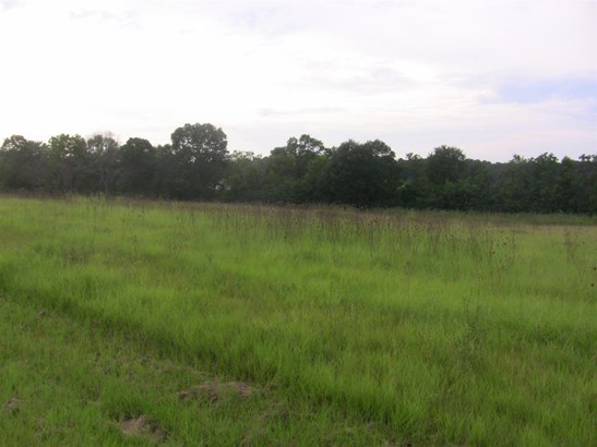 Lots and Land - Terry, MS (photo 3)