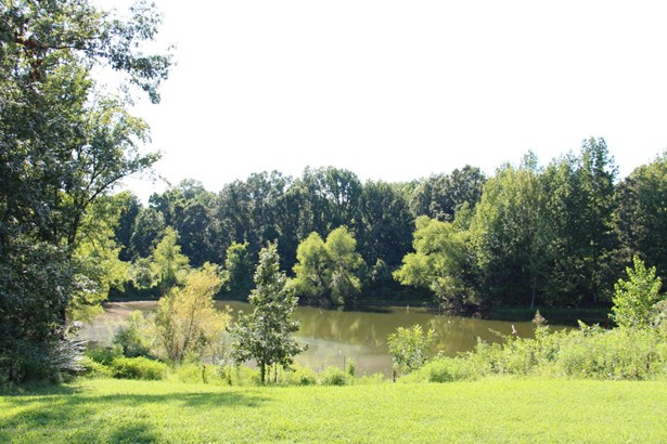 Residential/Single Family - Lake Cormorant, MS (photo 1)