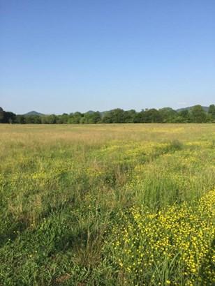 Lots and Land - Tellico Plains, TN (photo 4)