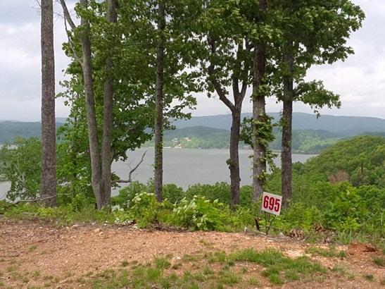 Lots and Land - Rockwood, TN (photo 4)