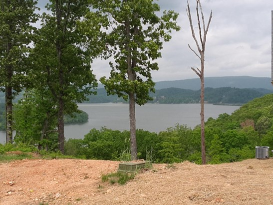 Lots and Land - Rockwood, TN (photo 5)