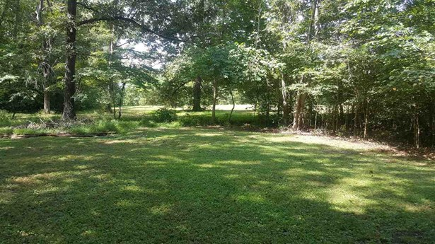 Lots and Land - Parsons, TN (photo 2)