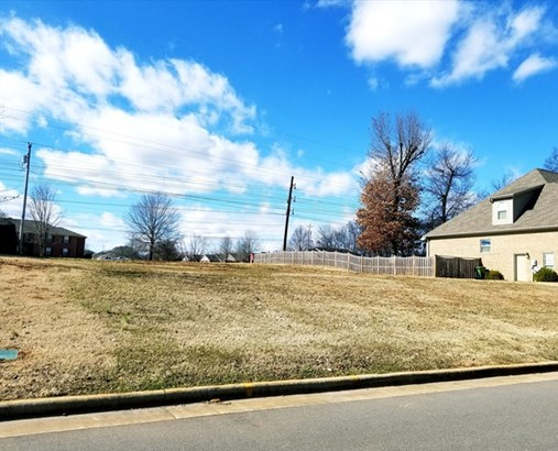 Lots and Land - Muscle Shoals, AL (photo 2)